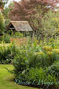 Beechleigh Garden - Jacky O'Leary garden designer_2989