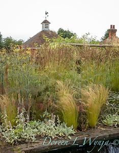 Beechleigh Garden - Jacky O'Leary garden designer_2974
