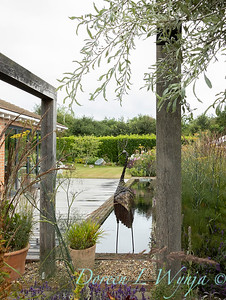 Beechleigh Garden - Jacky O'Leary garden designer_2982