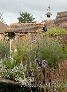 Beechleigh Garden - Jacky O'Leary garden designer_2987