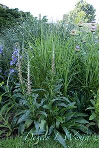 Pettifer's Garden - Virginia Price designer_1008