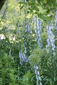 Pettifer's Garden - Virginia Price designer_1025