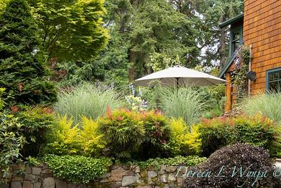 July in the garden_5520