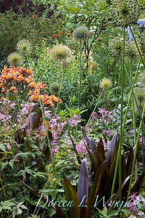 July in the garden_5511