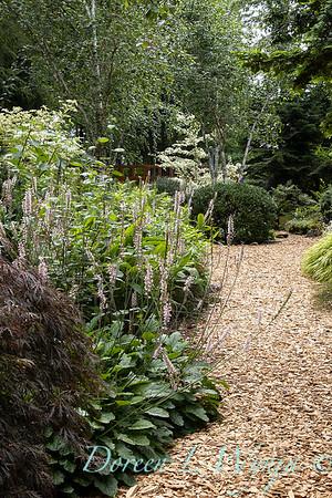 July in the garden_5537
