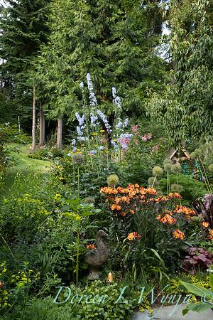 July in the garden_5507