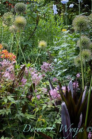 July in the garden_5510