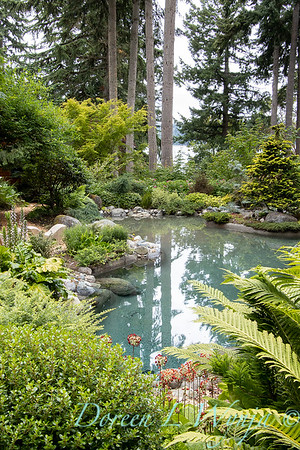 July in the garden_5530