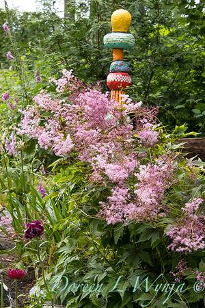 July in the garden_5518