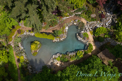 Drone shots over the pond_7100