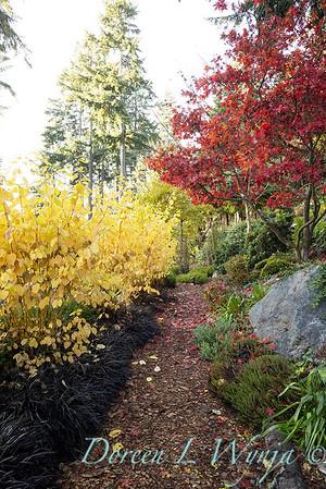 Finally fall color_8301
