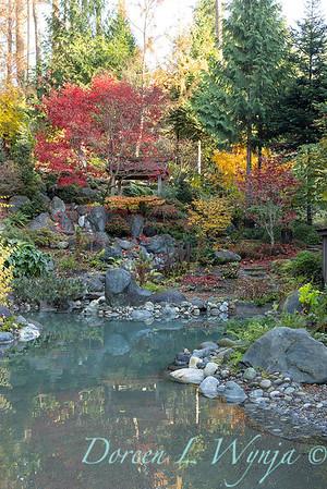 Finally fall color_8303