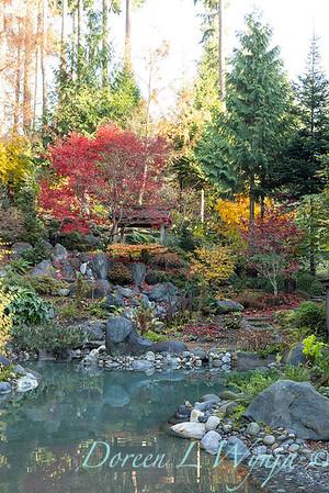 Finally fall color_8302