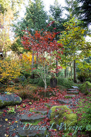 Finally fall color_8312