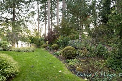 Whit & Mary's garden_7873