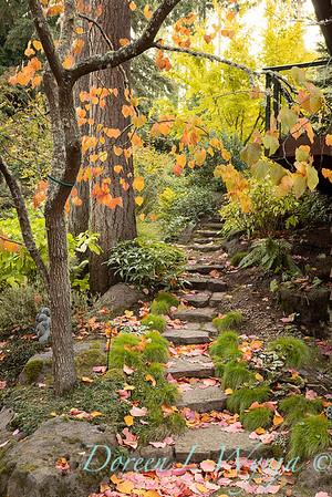 Whit & Mary's garden_7831