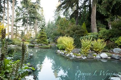 Whit & Mary's garden_7845