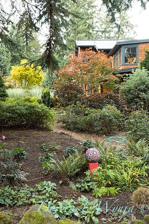 Whit & Mary's garden_7876
