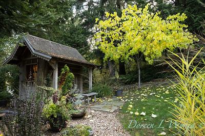 Whit & Mary's garden_7859