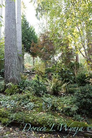 Whit & Mary's garden_7849