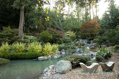 Whit & Mary's garden_7842