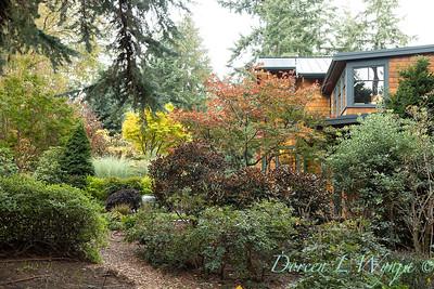 Whit & Mary's garden_7877