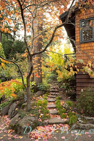 Whit & Mary's garden_7830
