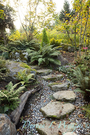 Whit & Mary's garden_7864