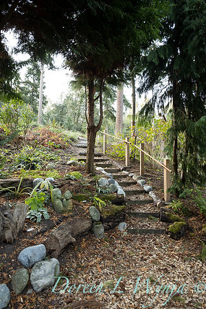 Whit & Mary's garden_7855