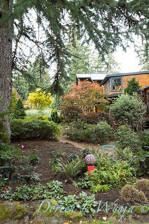 Whit & Mary's garden_7875