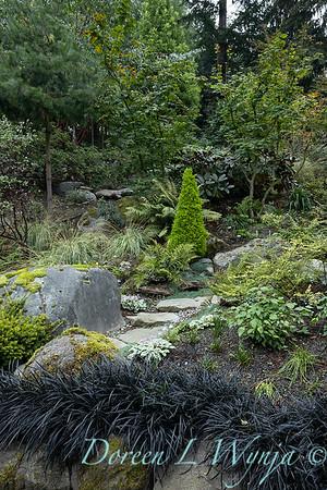 Asian Fusion garden_7202