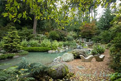 Asian Fusion garden_7236