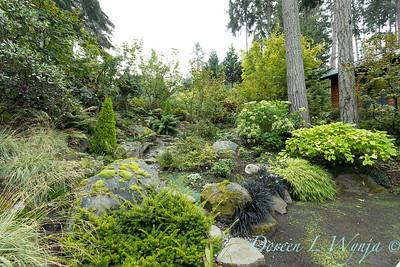 Asian Fusion garden_7200