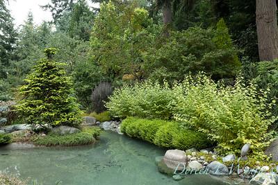 Asian Fusion garden_7233