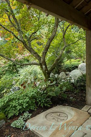 Asian Fusion garden_7240