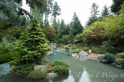 Asian Fusion garden_7210