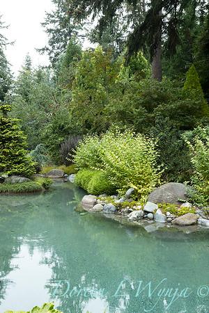 Asian Fusion garden_7232