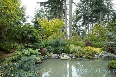 Asian Fusion garden_7234