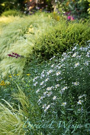 Whit & Mary Garden_6543
