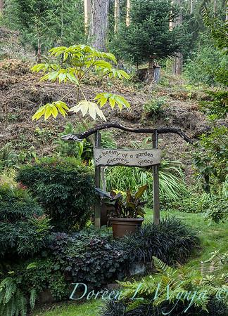 Whit & Mary Garden_6502