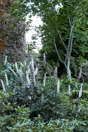Whit & Mary Garden_6501