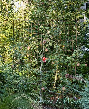 Whit & Mary Garden_6531