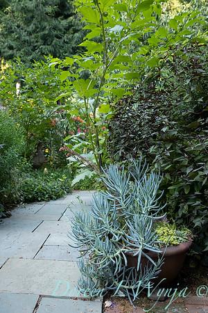 Whit & Mary Garden_6524