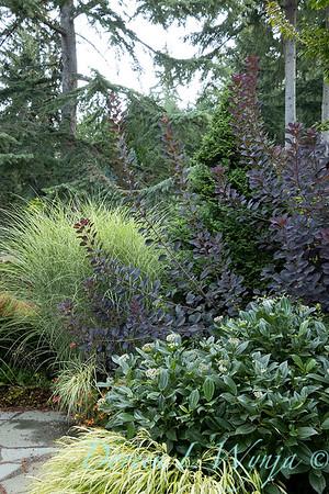 Whit & Mary Garden_6515