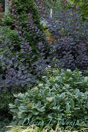 Whit & Mary Garden_6516