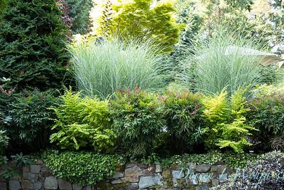 Whit & Mary Garden_6509