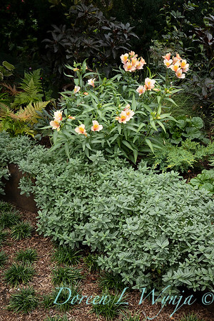 Lisa Bauer - designer's garden_1246