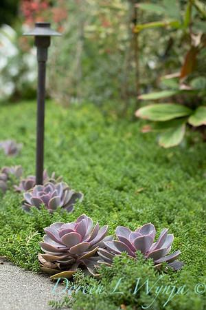 Lisa Bauer - designer's garden_1210