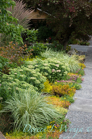 The Chartreuse Garden_1000