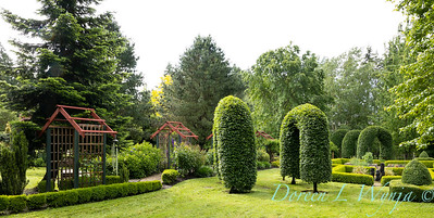 Froggsong Gardens_6007